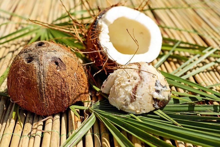 coconut-1501392_960_720-768x512
