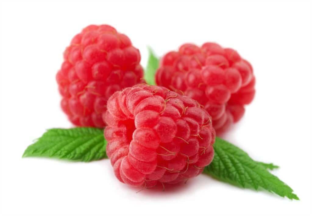 Raspberries as Natural Oil Sunscreen