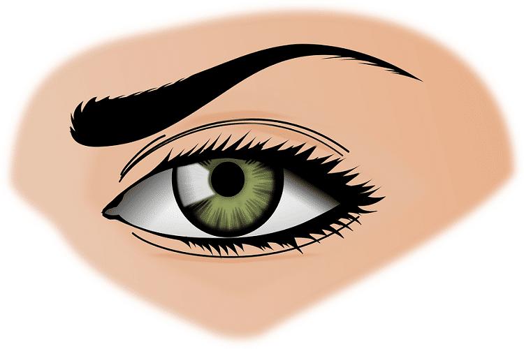 Eyebrows shape for a diamond face