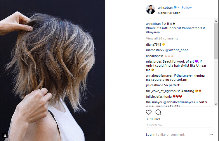 anh co tran hair colorists instagram account