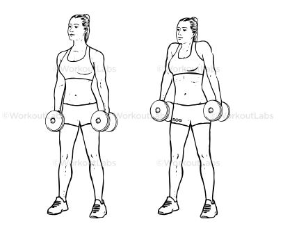 shoulder workouts, arm workouts, should workout, best should workout, arm workout routine, should workouts for women, upper body dumbbell workout, shoulder workouts for men, shoulder workout routine, shoulder and back workout, exercises for shoulders, bodybuilding shoulder workout, workouts for arms, arms exercises, full arm workout, arms workout for mens, shoulder and tricep workout, how to broaden shoulders, killer should workout, should weight exercises, arm workout without weights, dumbbell arm exercises, rear should workout, best exercises for shoulders, arm and shoulder workout