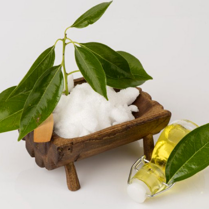where to buy camphor, camphorated oil, camphor melting point, camphor tablet, camphor plant, what is camphor used for, camphor oil uses, edible camphor, camphor skin, what does camphor smell like, essential oil decongestant, vicks vapor rub, camphor structure, camphor tablet, camphor balls, camphor crystals,