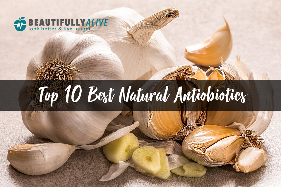 Top 10 Best Natural Antiobiotics – Our Top Picks For Everyone
